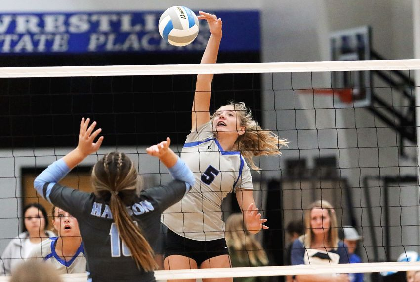 SESD volleyball preview: Loaded field gathers to gain seed points